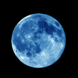 Blue_Moon_tyosya